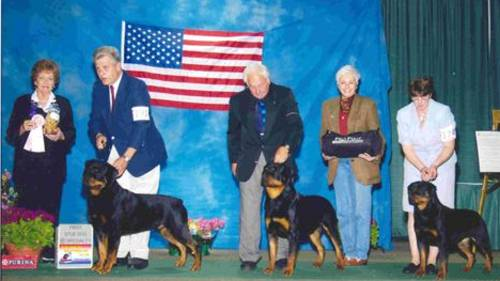 2003 CRC Specialty - 1st Place Stud Dog